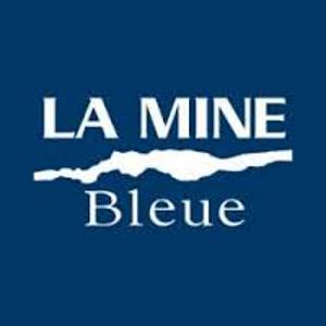 logo_minebleue